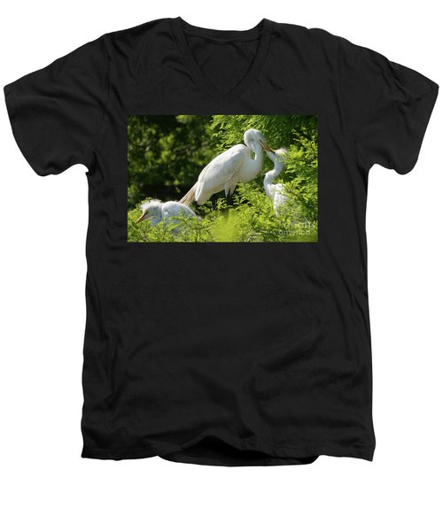 Egrets With Their Young Men's V-Neck T-Shirt