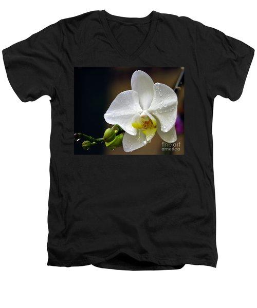 Elegance In White Men's V-Neck T-Shirt