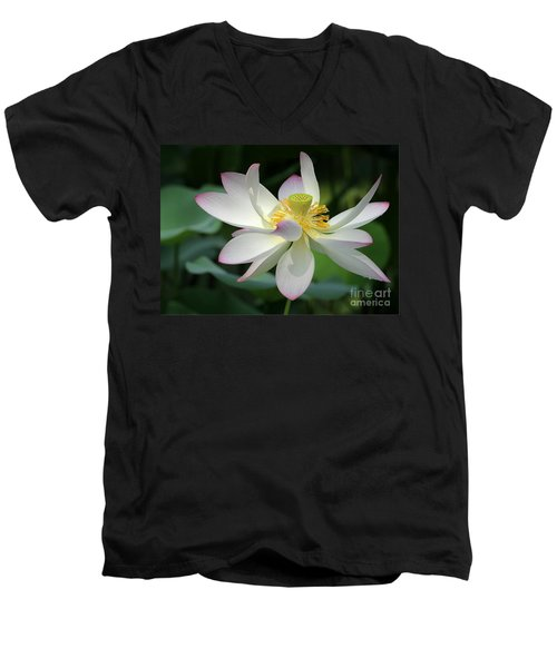 Elegant Lotus Men's V-Neck T-Shirt