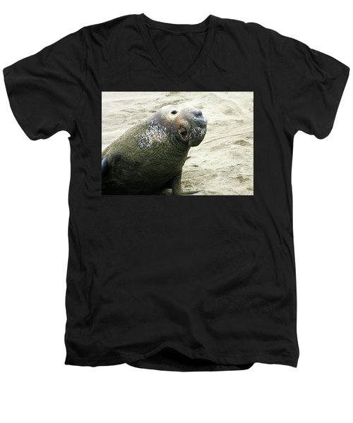 Men's V-Neck T-Shirt featuring the photograph Elephant Seal by Anthony Jones
