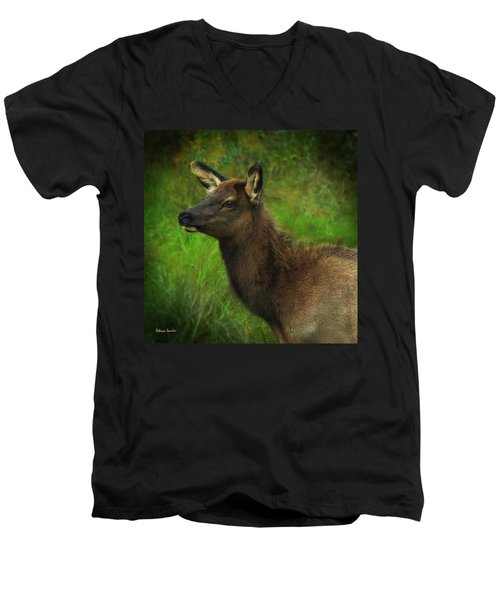 Elk Of Benezette Men's V-Neck T-Shirt