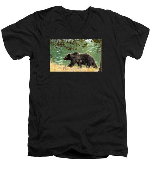 Emerald Stroll Men's V-Neck T-Shirt