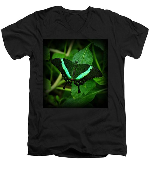 Emerald Swallowtail Men's V-Neck T-Shirt