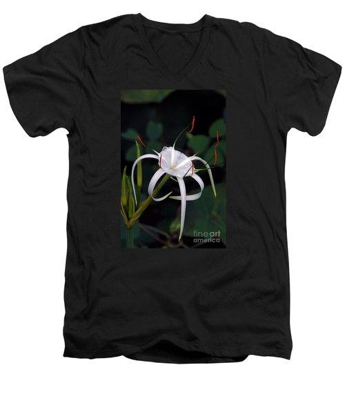En Pointe Men's V-Neck T-Shirt by Byron Varvarigos