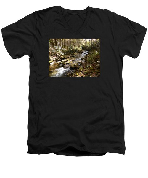 Men's V-Neck T-Shirt featuring the photograph Enchanted Stream - October 2015 by Joel Deutsch