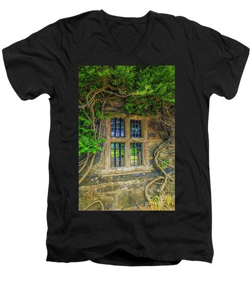 Enchanting Window Men's V-Neck T-Shirt