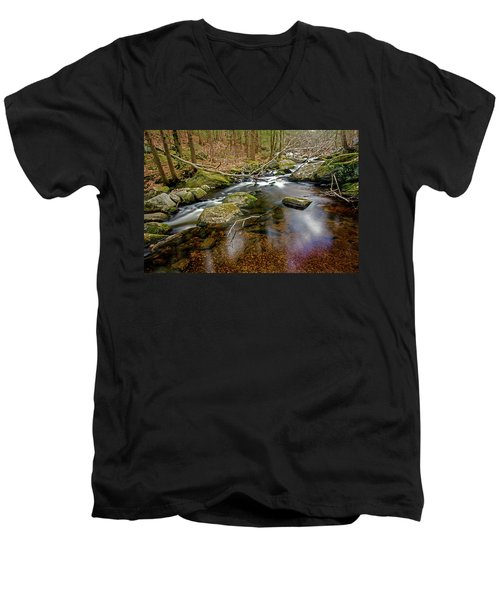 Enders Falls Men's V-Neck T-Shirt