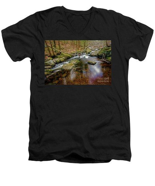Enders Falls Men's V-Neck T-Shirt