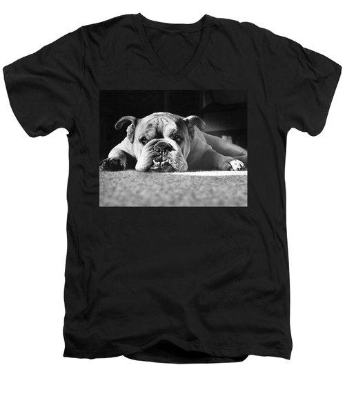 English Bulldog Men's V-Neck T-Shirt