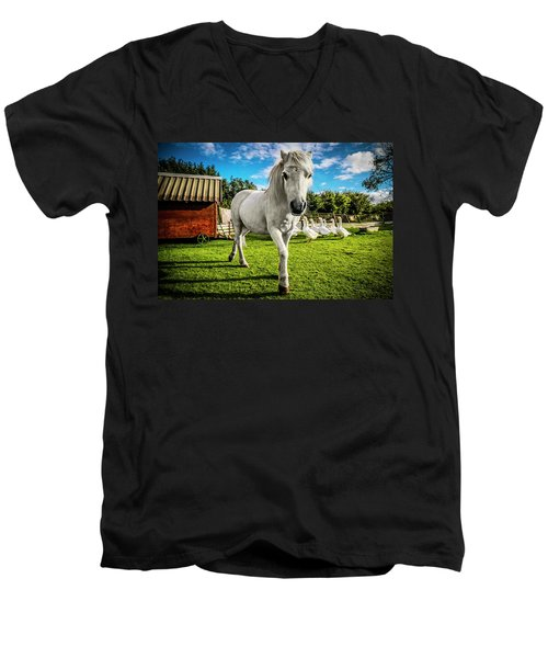 English Gypsy Horse Men's V-Neck T-Shirt