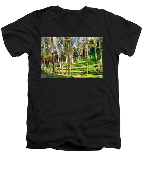 Eucalyptus Men's V-Neck T-Shirt