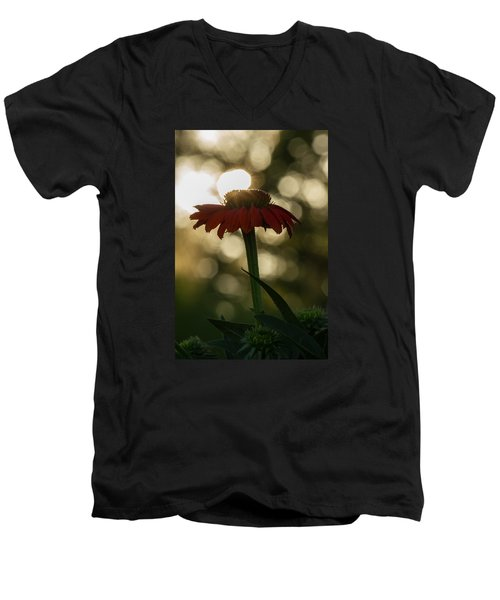 Men's V-Neck T-Shirt featuring the photograph Evening Elegance by Penny Meyers