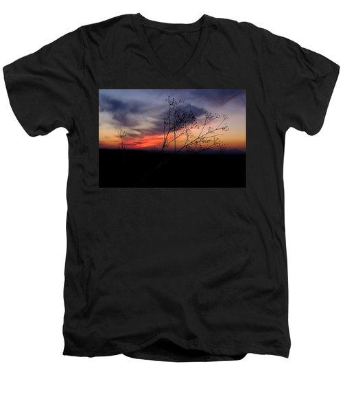 Evening Light Over Meadow Men's V-Neck T-Shirt