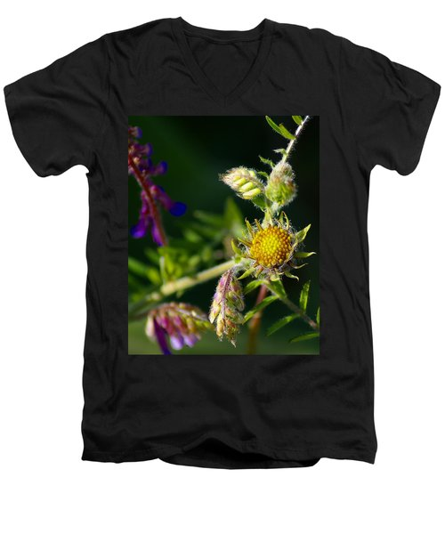 Eye Candy From The Garden Men's V-Neck T-Shirt