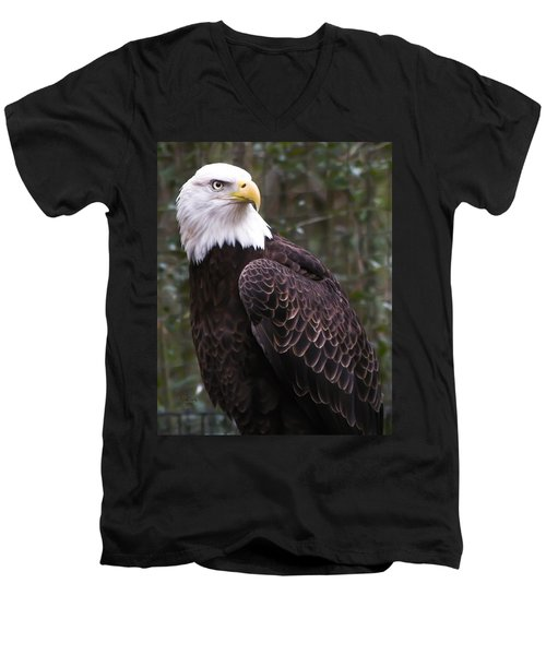 Eye Of The Eagle Men's V-Neck T-Shirt