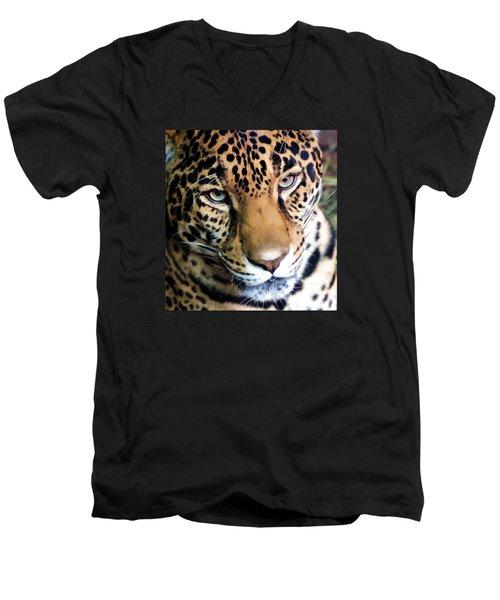 Eye Of The Leopard Men's V-Neck T-Shirt
