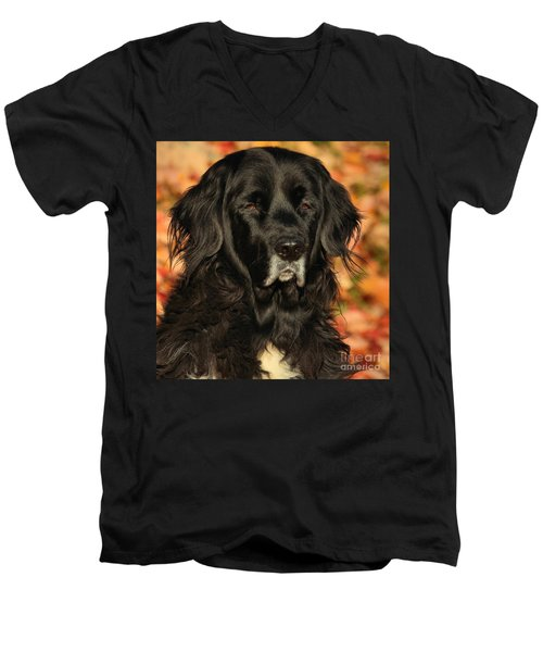 Eyes Of Autumn Men's V-Neck T-Shirt