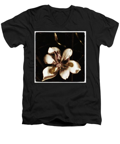 Men's V-Neck T-Shirt featuring the photograph Fairy Iris. A Butterfly Landed On My by Mr Photojimsf