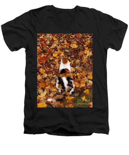Fall Catitude  Men's V-Neck T-Shirt by Christy Ricafrente
