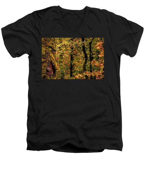 Fall Is Coming Men's V-Neck T-Shirt