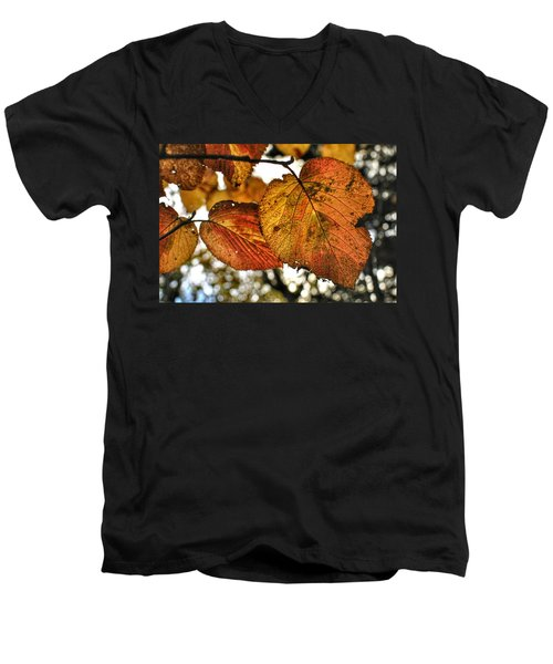 Fall Leaves Men's V-Neck T-Shirt