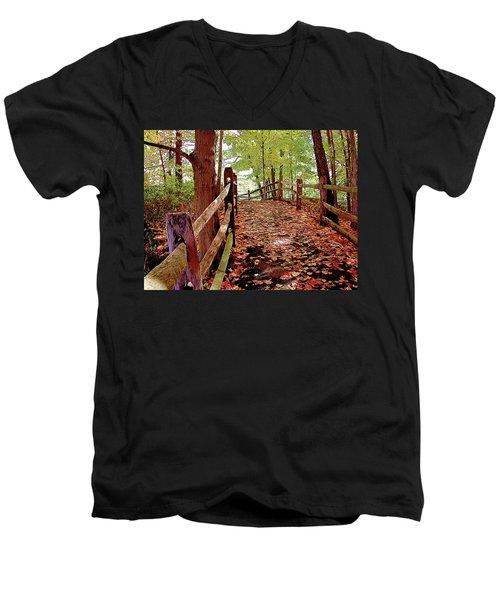 Fall Pathway Men's V-Neck T-Shirt