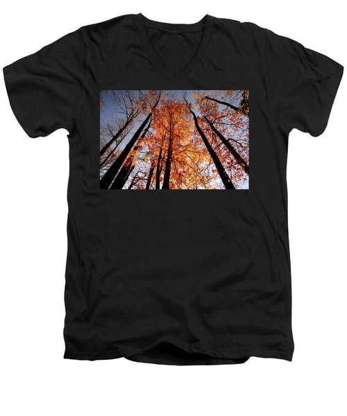 Men's V-Neck T-Shirt featuring the photograph Fall Trees Sky by Meta Gatschenberger