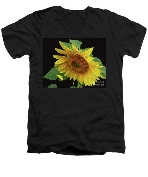 Fallen Men's V-Neck T-Shirt by Douglas Stucky