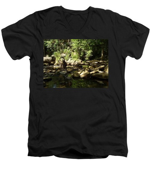 Falls Park Men's V-Neck T-Shirt