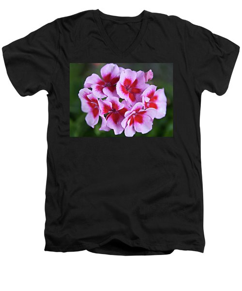 Men's V-Neck T-Shirt featuring the photograph Family by Sherry Hallemeier