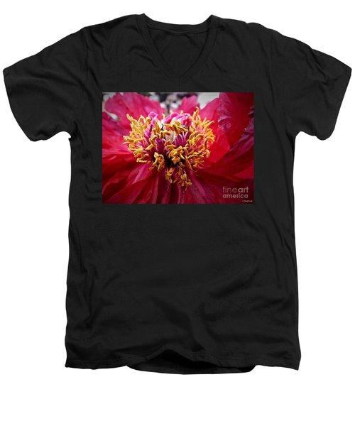 Fancy  Men's V-Neck T-Shirt by Christy Ricafrente
