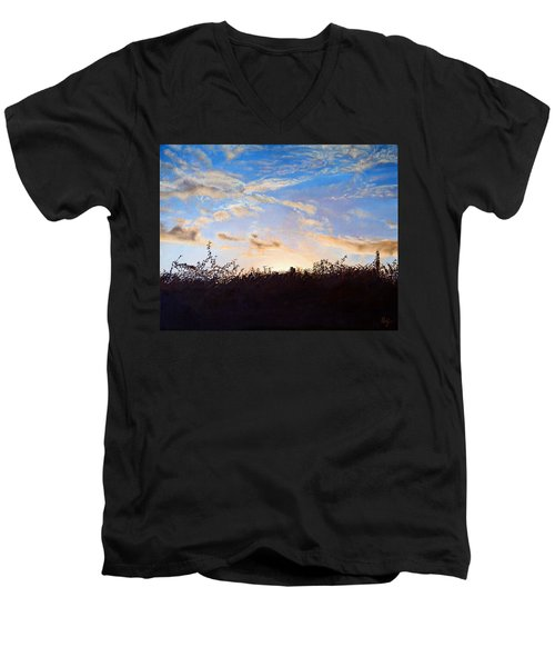 Far Horizons Men's V-Neck T-Shirt