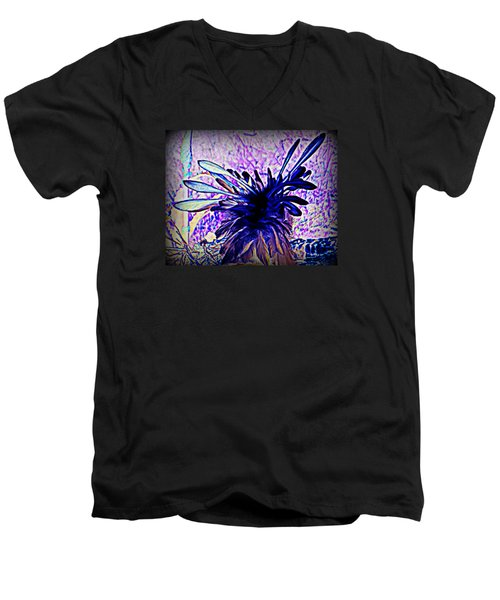 Feathered Crown Men's V-Neck T-Shirt