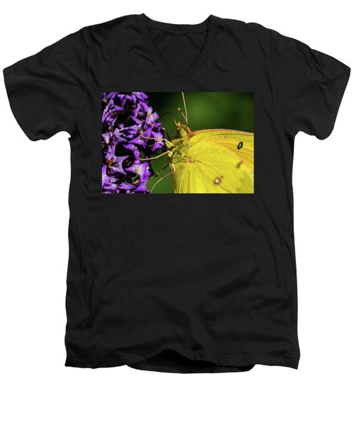 Men's V-Neck T-Shirt featuring the photograph Feeding Butterfly by Jay Stockhaus