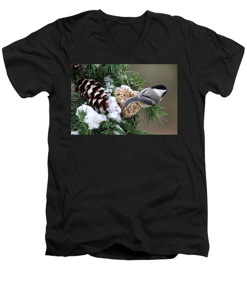 Feeding Feathered Friends Men's V-Neck T-Shirt