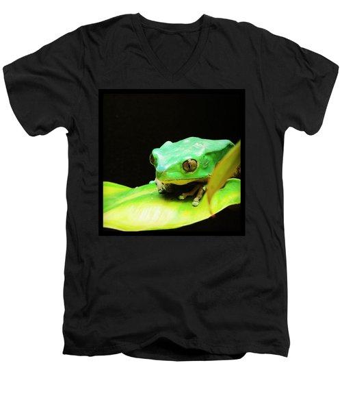 Feeling Froggy Men's V-Neck T-Shirt