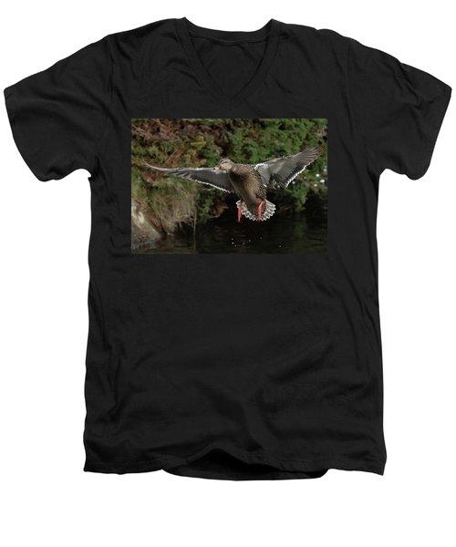 Female Mallard Men's V-Neck T-Shirt