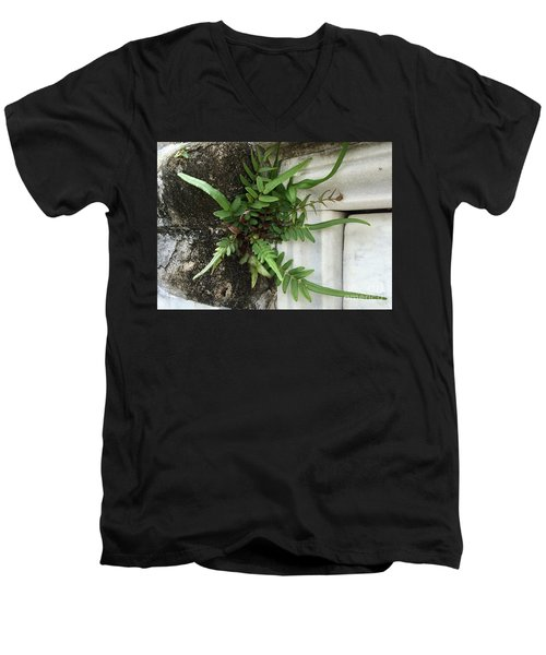 Fern Men's V-Neck T-Shirt