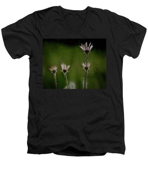 Field Of Flowers 4 Men's V-Neck T-Shirt