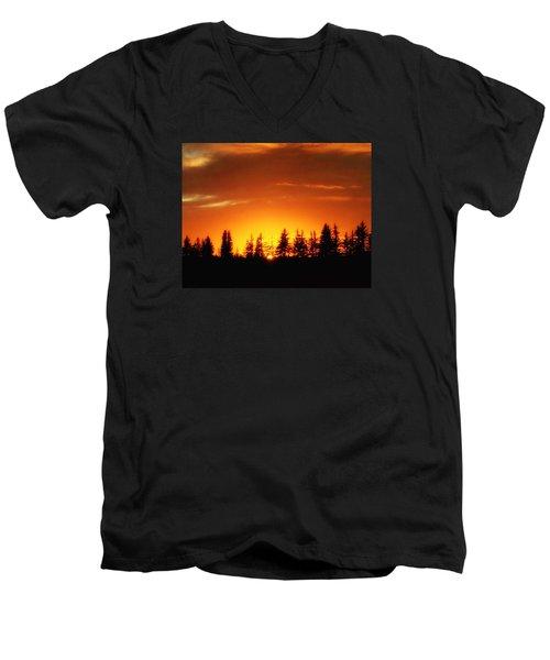 Fields Of Arbol Men's V-Neck T-Shirt