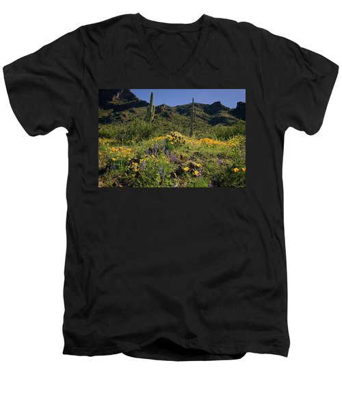Fields Of Glory Men's V-Neck T-Shirt by Lucinda Walter