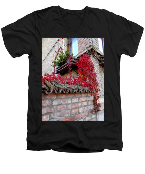 Fifty Shades Of Autumn - 12. Men's V-Neck T-Shirt