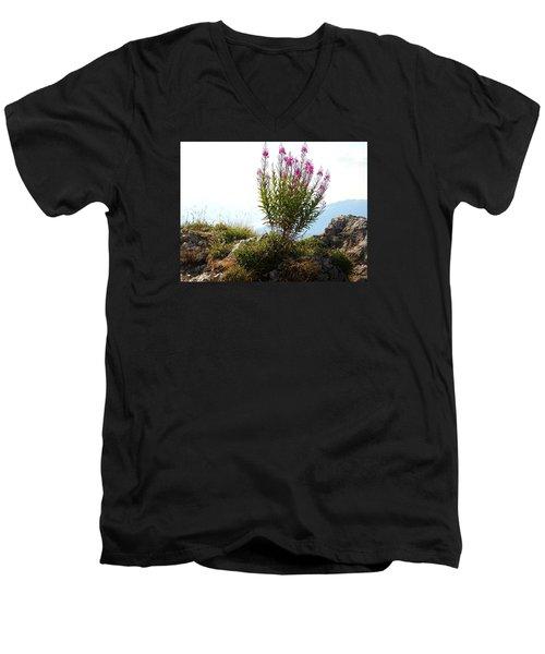 Fireweed Epilobium Angustifolium Men's V-Neck T-Shirt by Ernst Dittmar