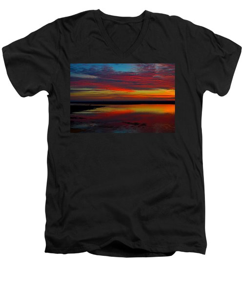 Fireworks From Nature Men's V-Neck T-Shirt by Dianne Cowen