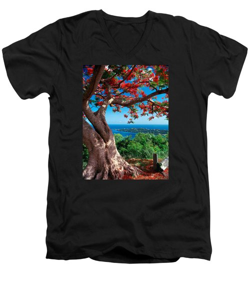 Flame Tree St Thomas Men's V-Neck T-Shirt