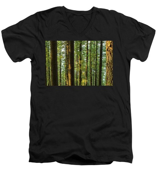Multnomah Wahkeena Loop Men's V-Neck T-Shirt