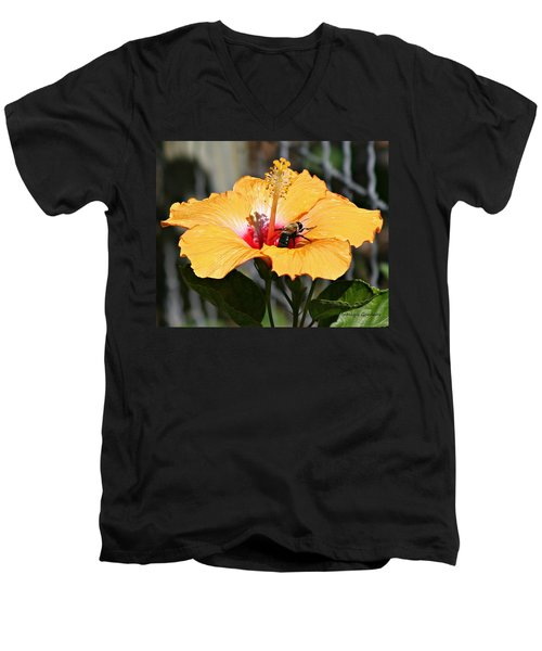 Flower Bee Men's V-Neck T-Shirt