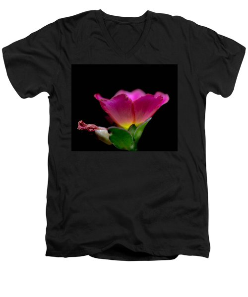 Flower Light Men's V-Neck T-Shirt by Bruce Pritchett
