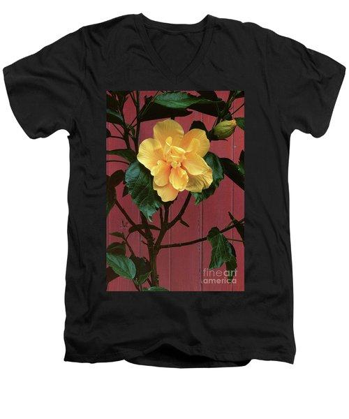 flower photographs - Yellow Rose Men's V-Neck T-Shirt