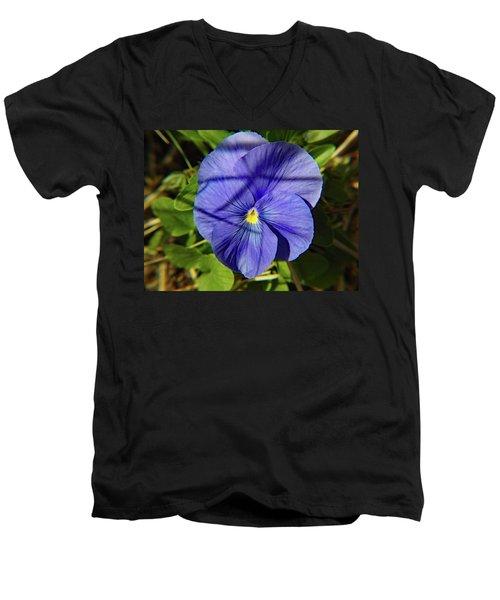 Flowering Pansy Men's V-Neck T-Shirt